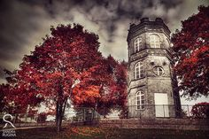 White tower of autumn surreal photo red trees от behindmyblueeyes