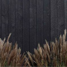 Shed Plans - Charred Larch Wood Cladding · Russwood Timber - Now You Can Build ANY Shed In A Weekend Even If You've Zero Woodworking Experience! Cedar Cladding, Exterior Cladding, Black Cladding, Exterior Design, Interior And Exterior, Cafe Exterior, Gray Exterior, Timber Cabin, Charred Wood