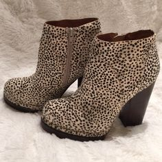Jeffrey Campbell Booties Wow! • can't find these anywhere! • mohair • zipper closure • NWOT Jeffrey Campbell Shoes Ankle Boots & Booties