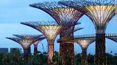 CNN.co.jp:50メートルの人工の木がそびえる シンガポールの新名所を紹介! - (5/6)
