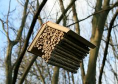 The Bee Library at Yorkshire Sculpture Park by Alec Finlay.  24 book nests for solitary bees.