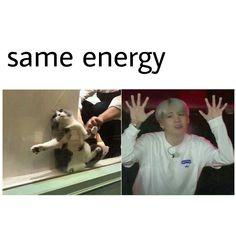 Uwu energy Min Yoongi Bts, Min Suga, Daegu, Kpop, Bts Memes Hilarious, Bts Tweet, I Love Bts, Bts Group, Bts Photo