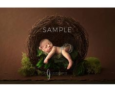 Photography Contests, Photoshop Photography, Photography Backdrops, Newborn Photography, Anne Geddes, Digital Backdrops, Newborn Shoot, Beautiful Butterflies, Baby Pictures