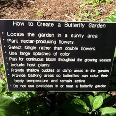 """good basics with these add'l thoughts:   1. Always include native plants  2. Diversity of plants=Diversity of wildlife  3. Use many different colors  4. """"Cluster"""" flowers are butterfly magnets  5. Learn to identify butterfly eggs, cats & chrysalis    6. Enjoy!"""