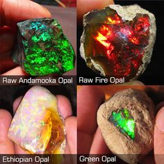 Types of opal with photos | Geology IN
