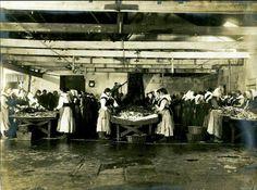 Mulleres ná fábrica limpando sadiñas Primeiros anos do século XX
