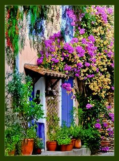 This website has beautiful travel photographs from world travelers. I could not stop looking and now I have a very long list of places I want to visit. Floral Entry, Grimaund, Provence, France photo via besttravelphotos