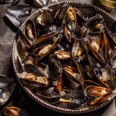 Basic Mussels 9