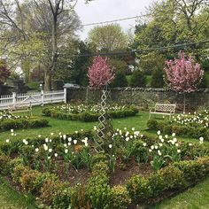 Tulip beds, especially single-color parterre beds, need the finishing touch of low underplanting.   Eva G. Contreras (@cafedesignblog) Instagram