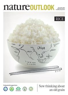A simple grain with global impact, rice has helped to build empires and fed revolutions. Now, scientists are starting a rice revolution of their own to feed a hungry world. By decoding genetics, improving breeding and, perhaps, reshaping the plant's biology, researchers are working to take the world's most vital crop into the future.