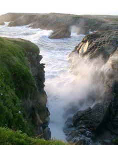 Saint-Pierre-Quiberon, Bretagne http://tracking.publicidees.com/clic.php?progid=378&partid=48172&dpl=http%3A%2F%2Fwww.ecotour.com%2Fvoyage%2Freunion-p76