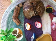 House for hermit crab, use multi colored sand from pet store to create a colorful home