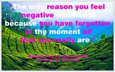 """""""La única razón por la que sientes emociones negativas es debido a que has olvidado en el momento todo lo que eres."""""""