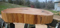 "18"" Oak Natural Tree Slice Natural Edge Wood Slice Chopping Block End Grain…"