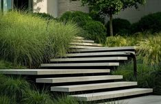 Garden stairs - Floating concrete steps by Page Duke Landscape Architecture Landscape Stairs, Landscape Plans, Landscape Architecture, Architecture Design, Stairs Architecture, Modern Landscape Design, Modern Landscaping, Garden Landscaping, Shade Landscaping