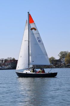 Home to wildlife, wineries, oysters and history, this estuary along the coasts of Maryland and Virginia—the largest in North America Sailing Lessons, Chesapeake Bay, Beautiful World, Maryland, Holland, North America, Virginia, Things To Do, Wildlife