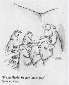 4.3. Genetics humor- My Absolute favorite cartoon!!!