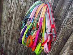 ColorFunDogs running belt #runningbelt #colorfundogs