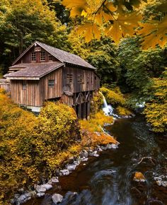 The most quaint and crisp yellow autumn leaf scene I've ever seen! A beautiful old grist mill churns away.