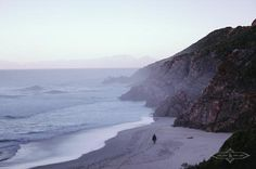 Kogel Bay / The Lion & The Lady South Africa, Lion, Adventure, Water, Outdoor, Leo, Water Water, Aqua, Outdoors