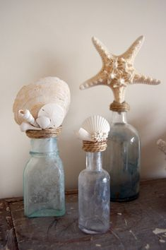 Ambientes: Decorar com conchas e búzios Seashell Crafts, Beach Crafts, Seashell Projects, Diy Bottle, Bottle Art, Sea Glass Decor, Diy Craft Projects, House Projects, Diy Crafts