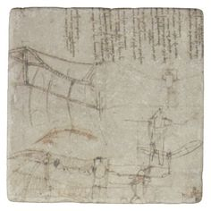 Da Vinci's Flying Contraption