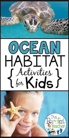 Find more Ocean Activities than you know what to do with for your Preschool & Kindergarten aged littles! I've included art & crafts, books, freebies, literacy activities, & more. Kindergarten Readiness, Preschool Kindergarten, Preschool Ocean Activities, Preschool Painting, Preschool Learning, Learning Games, Literacy Activities, Activities For Kids, Animal Activities