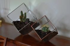 Earth Terrarium Kit large cube glass planter in by ABJglassworks, $75.00