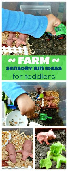 Farm life - sensory activities and imaginative play for toddlers. Have a look to get an inspiration - and to see where our two clay pigs ended up!