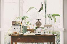 a vintage botanical science set we just love!