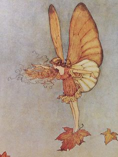 From the online collection 'Art of the Australian Fairy'. A russet coloured fairy floating on an autumn leaf. 'The Voyager' illustration from Elves & Fairies by Ida Rentoul Outhwaite. Pretty Art, Cute Art, Vintage Fairies, Vintage Art, Fairytale Art, Hippie Art, Fairy Art, Aesthetic Art, Autumn Aesthetic