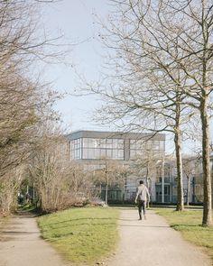 WESTSIDE - Programme tertiaire_RENNES - Agence a/LTA architectes - urbanistes Le Trionnaire (x2) - Tassot - Le Chapelain Sidewalk, Photos, Country Roads, Rennes, Architects, Program Management, Places, Pictures, Side Walkway