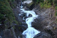 Koyouji waterfall ( Yakushima ,Japan ) Author: Hitomi Zama. Yakushima, Natural World, Japan Travel, Waterfalls, View Photos, Author, Nature, Beautiful, Stunts