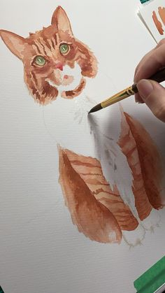 Watercolor Cat Portrait by Amanda Harrison – Aquarell Watercolor Cat, Watercolor Animals, Watercolor Portraits, Simple Watercolor, Watercolor Trees, Tattoo Watercolor, Watercolor Background, Watercolor Landscape, Watercolor Illustration