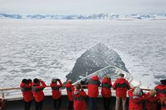 Another kind of cruise: An Antarctic cruise!
