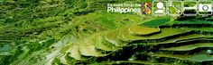 One of the famous natural wonders in the world is right here in the Philippines. The Banawe Rice Terraces have put our country in the map. If you are a Filipino, it's best that you visit Banawe before you travel anywhere else. Gupo Experience guarantees that it's worth it. #itsmorefuninthephilippines #traveldeals #hotdealsphilippines #banawericeterraces