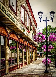 Flower and vintage lamp posts, Red Deer, Alberta, Canada