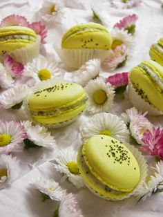 Macaroon Tower, Mini Cupcakes, Essie, Sweet Recipes, Lemon, Sweets, Desserts, Blog, Sugar Art