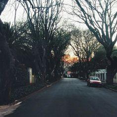 Parkview,  Johannesburg,  September2014 Street View, Park, Life, South Africa, Parks