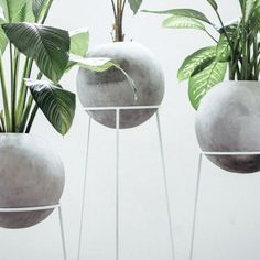 Concrete Planter - 'Piedra Luna' is a gorgeous concrete planter that combines natural greenery with industrial living, offering the modern homeowner a dec. Concrete Cement, Concrete Furniture, Concrete Crafts, Concrete Projects, Concrete Design, Concrete Planters, Diy Projects, Beton Design, 3d Prints
