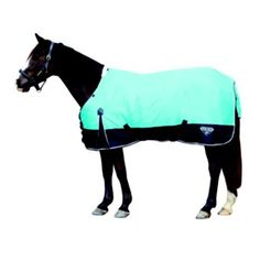 Saxon 600 Standard Neck Medium Blanket - Horse.com