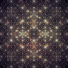 algorithms of the universe.