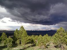 Utah Highway 12 -- One of the only roads in the US to take you across multiple environments ranging from deserts to mountains to canyons in a matter of hours. A thunderstorm darkens the swath of desert between me and Capitol Reef NP 20 miles away. 38.027295,-111.343602