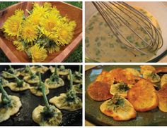 Delicious fritters made from fresh dandelions.