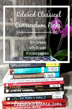 Our Relaxed Classical Homeschool Curriculum Picks! Homeschool Curriculum Reviews, Curriculum Planning, Lesson Planning, Homeschooling, Well Trained Mind, Teachers Toolbox, Daily Math, Classical Education, Math Books