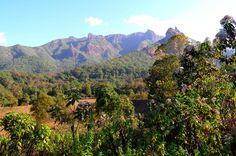 The Bale Mountains in Ethiopia http://www.mangoafricansafaris.com/