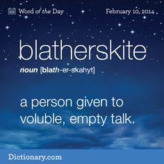 Blatherskite: a person given to voluble, empty talk.