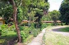 El Bosque Hotel Monteverde Costa Rica #CostaRica   monteverdetours.com
