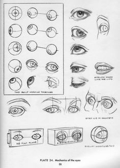 Anatomy Drawing Reference - I thought I had a good way to make eyes for my little sculptures, until yesterday. I would hallow the head out once it was hard enough to do so without collapsing. Then I would smoosh in eye bals f… Drawing Lessons, Drawing Techniques, Drawing Tips, Book Drawing, Figure Drawing, Drawing Art, Drawing Sketches, Eye Anatomy, Anatomy Drawing