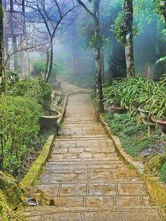 ✯ Sapa, Vietnam